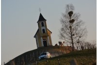Gaststarter Marijan Griebel bei der Rebenland-Rallye