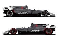Der Wagen von Grosjean und Magnussen