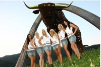 Castrol Grid Girls auf dem Red Bull Ring